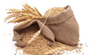 Зерно / Сертификат на зерно
