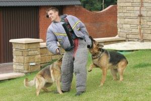 Принят ГОСТ на услуги по дрессировке служебных собак