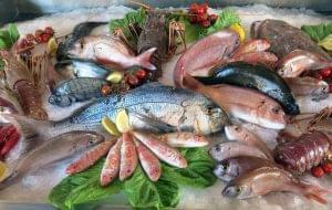 Техрегламент ЕАЭС «О безопасности рыбы и рыбной продукции»